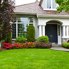 Professional-Lawn-Systems---Landscaping